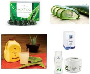 Aloe Vera Products - Hungary