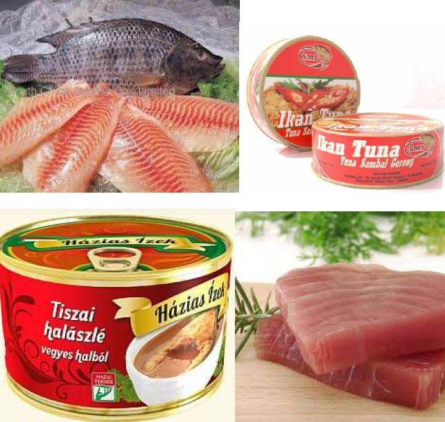 Fish products - Hungary